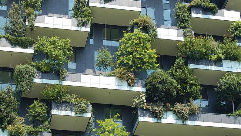 Balcony Gardens For The Frustrated Gardener