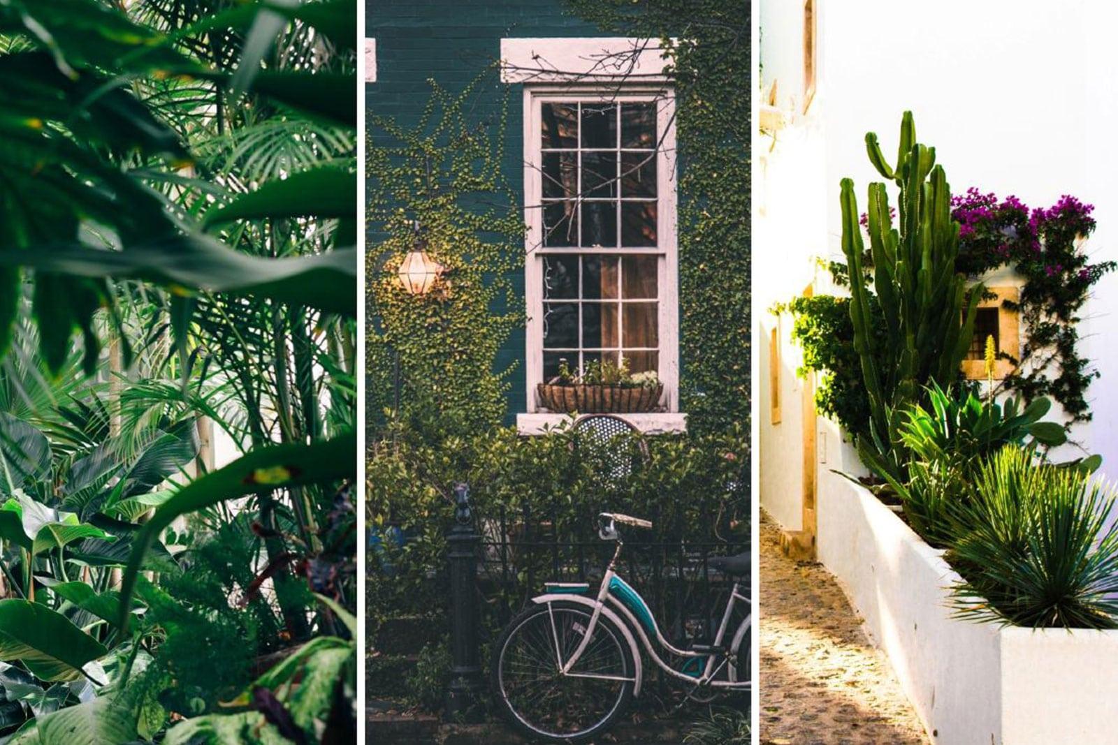 garden design themes