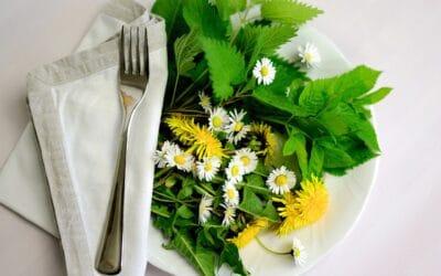 Eatable Gardens: Foodscaping for Beginners